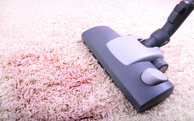 Affordable Professional Carpet Cleaning Perth
